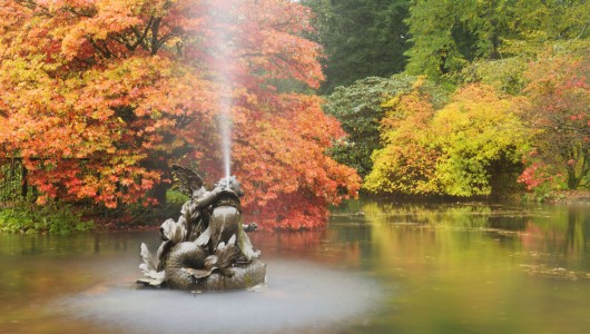 Benmore pond
