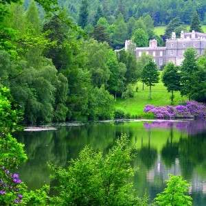 'When summer smiled on sweet Bowhill '- Sir Walter Scott